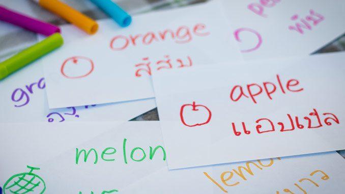 三种泰国留学授课语言,究竟该怎么选?