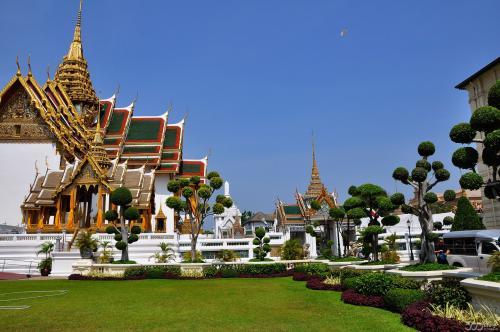 去泰国留学回来好就业吗,前景怎样?